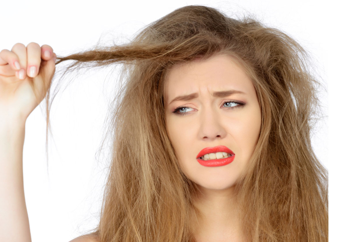 qual é o melhor shampoo para cabelos secos